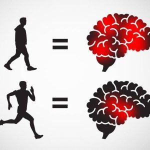 Efecto de intensidad de ejercicio sobre la función cerebral