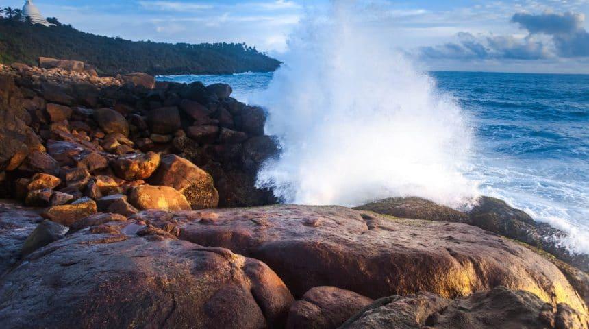 Colágeno Marino: los mares son un gran proveedor