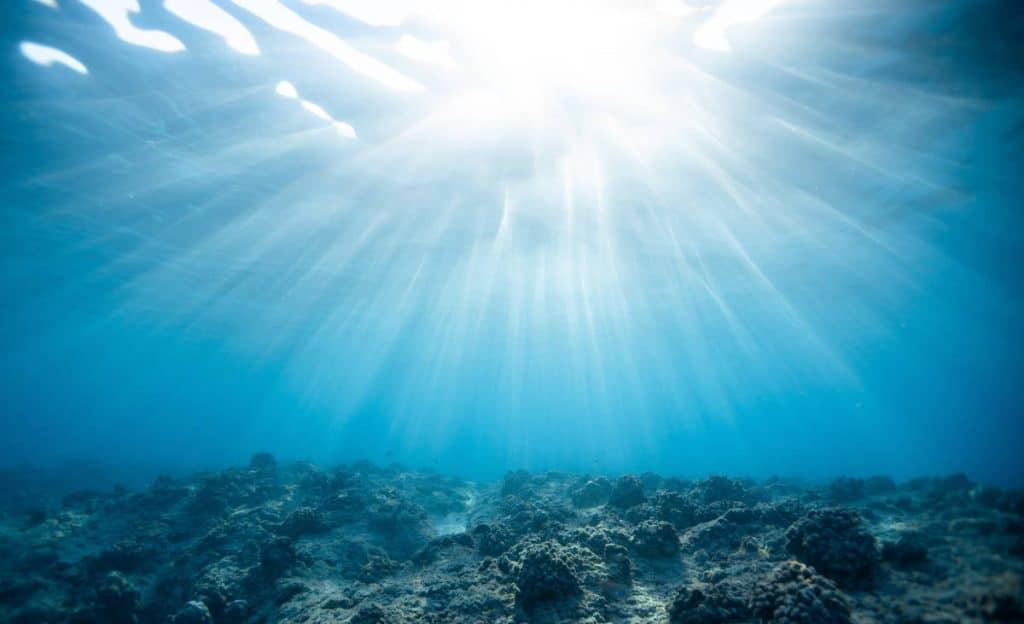 colágeno marino mercadona